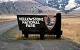 Best Things To See In  Yellowstone